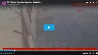 THY Kabin Amirinin Hayatını Kaybettiği Kaza Kamerada